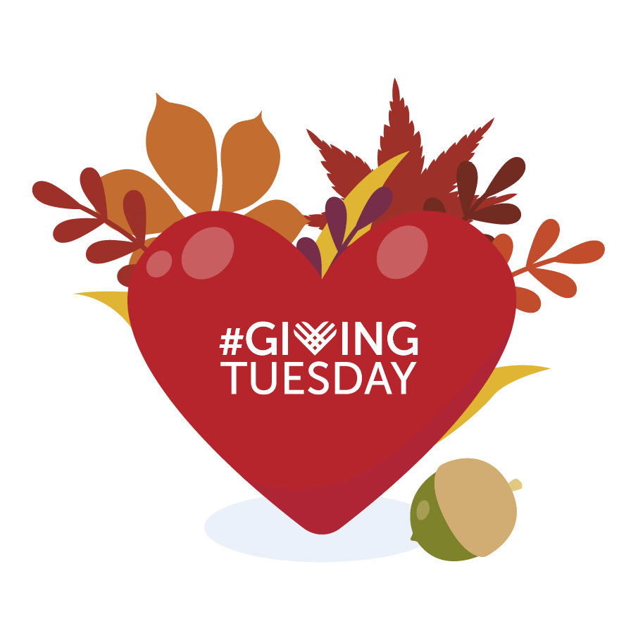 Giving Tuesday_Graphic#3